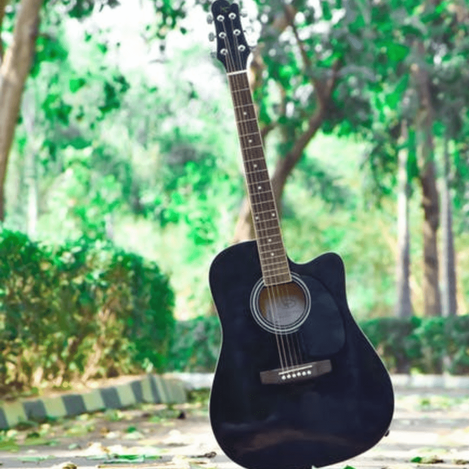 10 Best Acoustic Guitars For Beginners And Professionals
