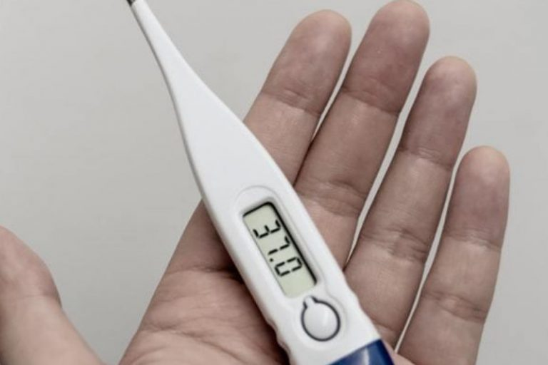 Best Digital Thermometers in India
