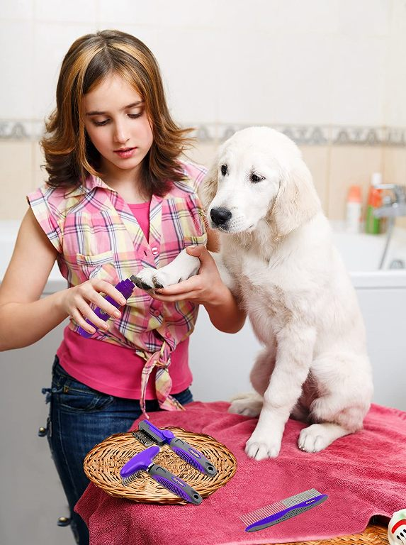 Best Dog Nail Grinders In India